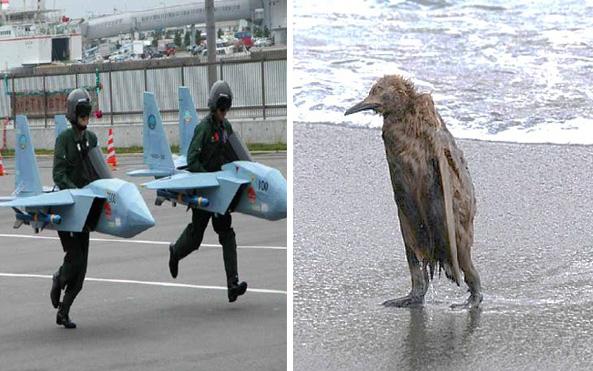 Några gör vad som helst för att få flyga. Andra verkar less fast dom kan.